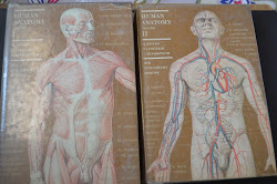 Human Anatomy Vol 1 and Vol 2